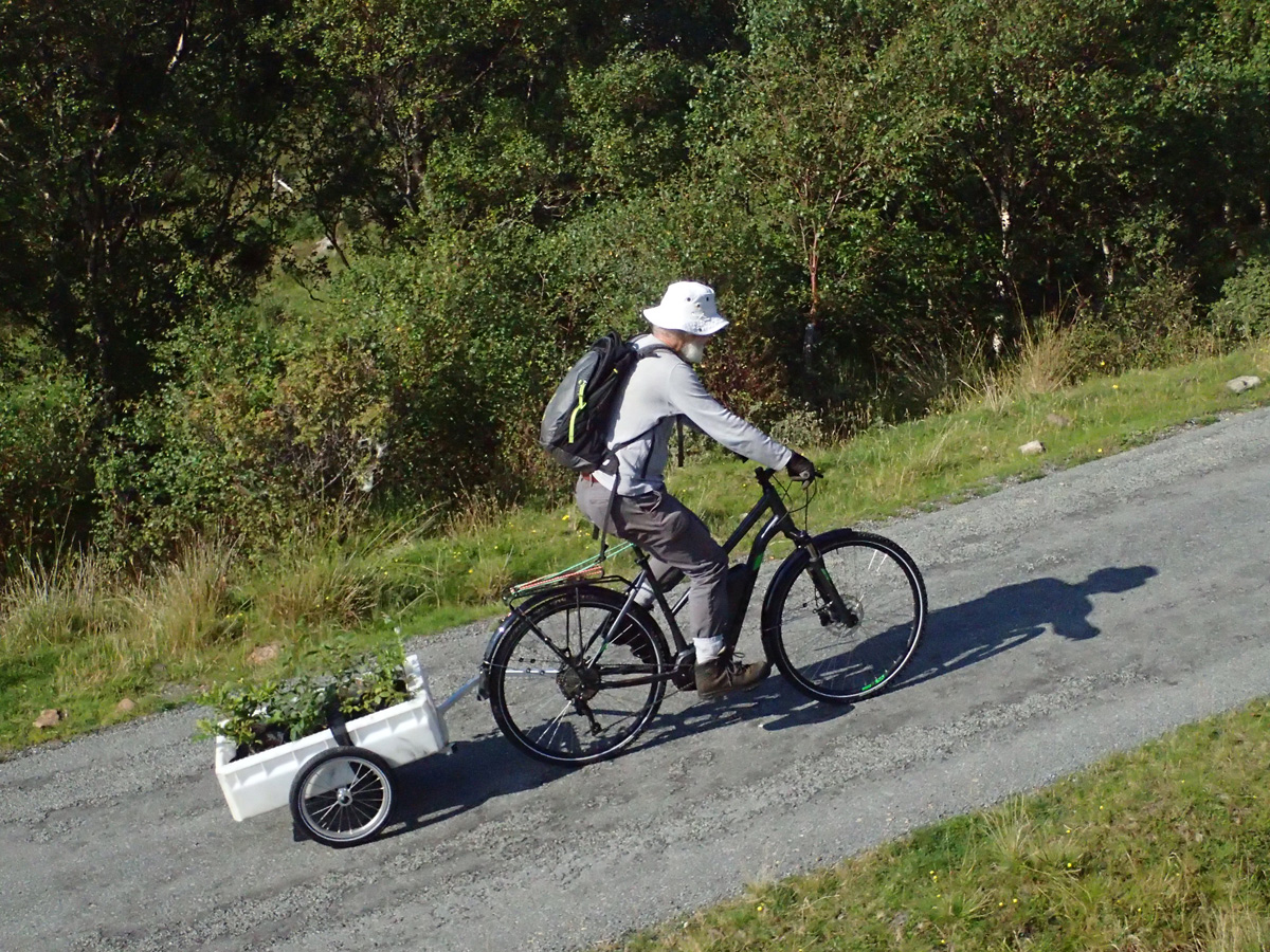 beared man on ebike with trailer containing tree seedlings